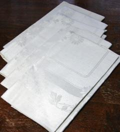 5 Napkins unused 58 X 58 cm**