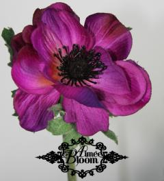 Anemones Pink Aimée Bloom*